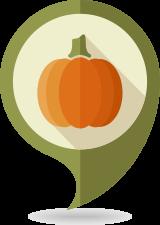 pumpkins-new-forest